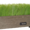 Grass Planter6
